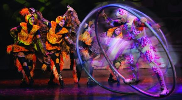 Cirque Dreams: Jungle Fantasy at Mohegan Sun Arena
